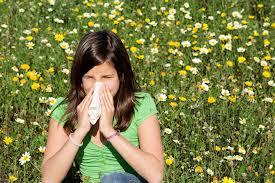 Поллиноз, или «сенная лихорадка»
