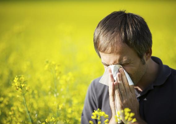 Как различить вазомоторный и аллергический ринит? - AllergoLife ru
