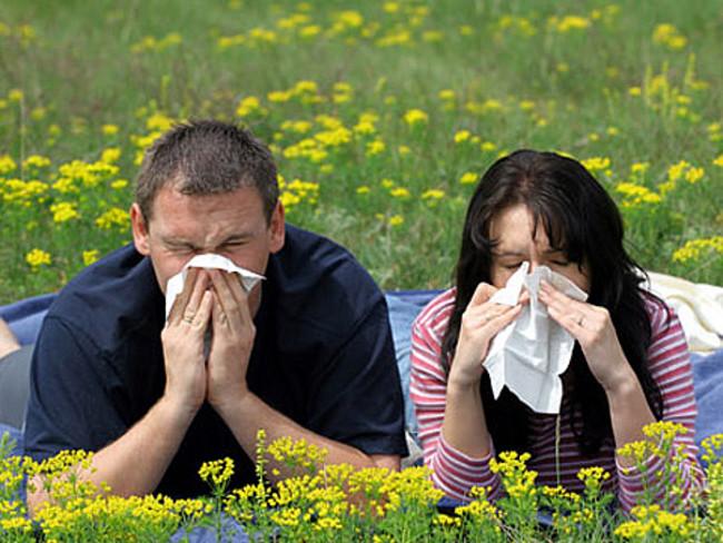 при лечении аллергии